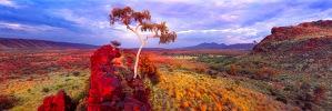 australianphotography.com